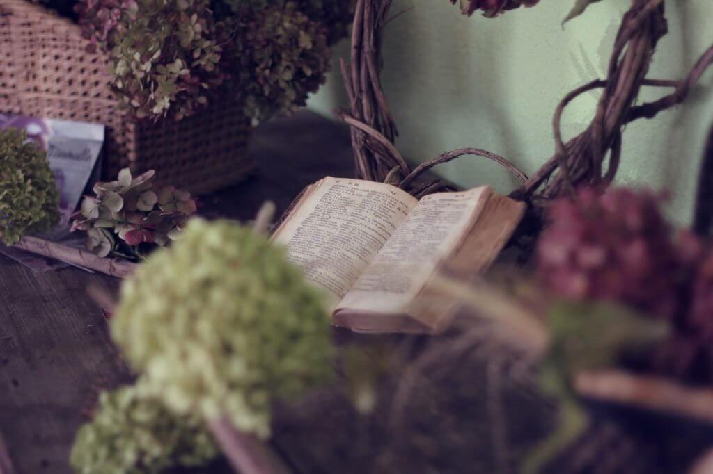 book-1210027_1920-min