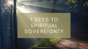 trees with light shining spiritual blog sovereignty healing
